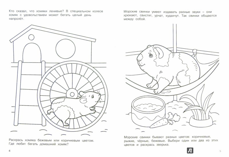 Иллюстрация 1 из 8 для Домашние питомцы | Лабиринт - книги. Источник: Лабиринт