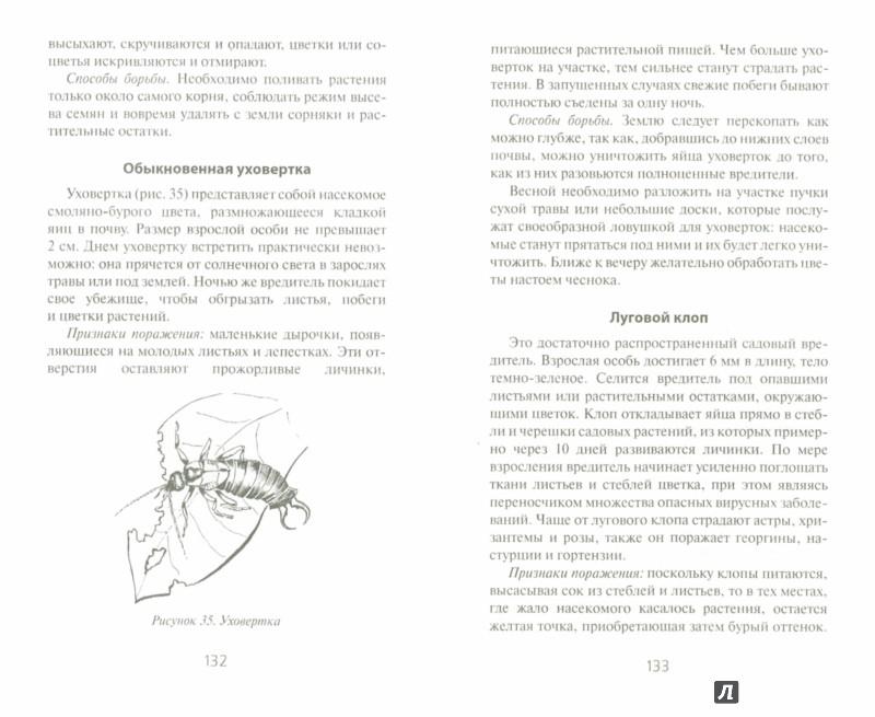Иллюстрация 1 из 7 для Умное цветоводство круглый год на даче и дома | Лабиринт - книги. Источник: Лабиринт