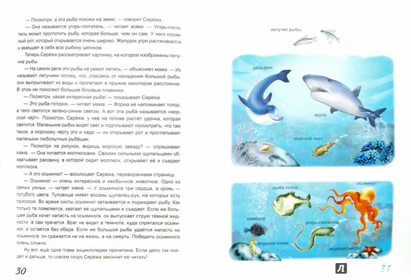 Иллюстрация 1 из 40 для Жил-был Сережа. Сережа-почемучка. В 3 книгах. Книга 3. Часть 2 - Оксана Стази | Лабиринт - книги. Источник: Лабиринт