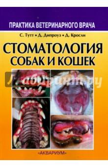 Стоматология собак и кошек миска для кошек собак гамма n0