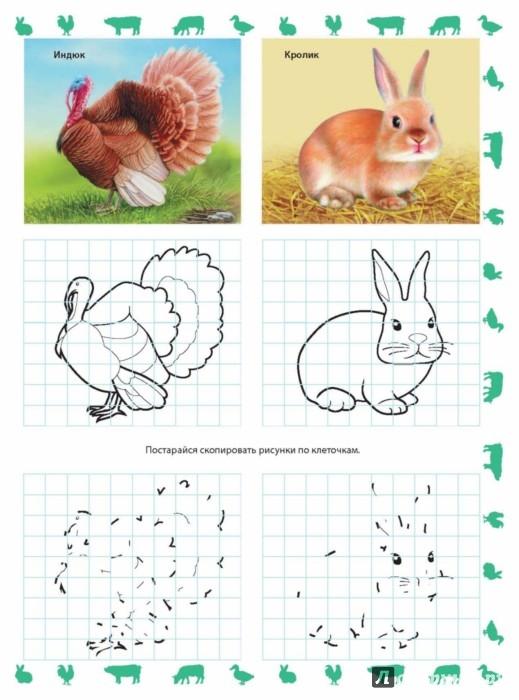 Иллюстрация 1 из 3 для На ферме | Лабиринт - книги. Источник: Лабиринт