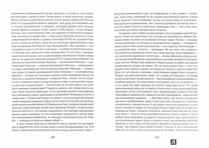Иллюстрация 1 из 19 для Река без берегов. Часть вторая: Свидетельство Густава Аниаса Хорна. Книга вторая - Ханс Янн   Лабиринт - книги. Источник: Лабиринт