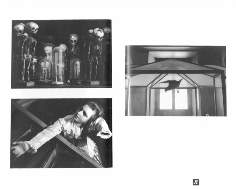 Иллюстрация 1 из 18 для Порок - Эрве Гибер | Лабиринт - книги. Источник: Лабиринт