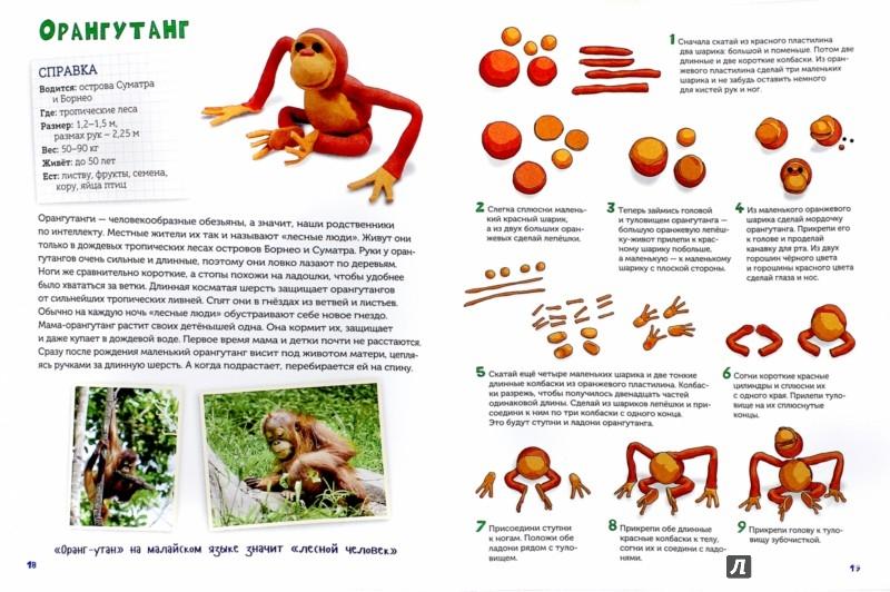 Иллюстрация 1 из 25 для Пластилиновая Африка и все, все, все... Дикие животные - Норберт Паунтер | Лабиринт - книги. Источник: Лабиринт