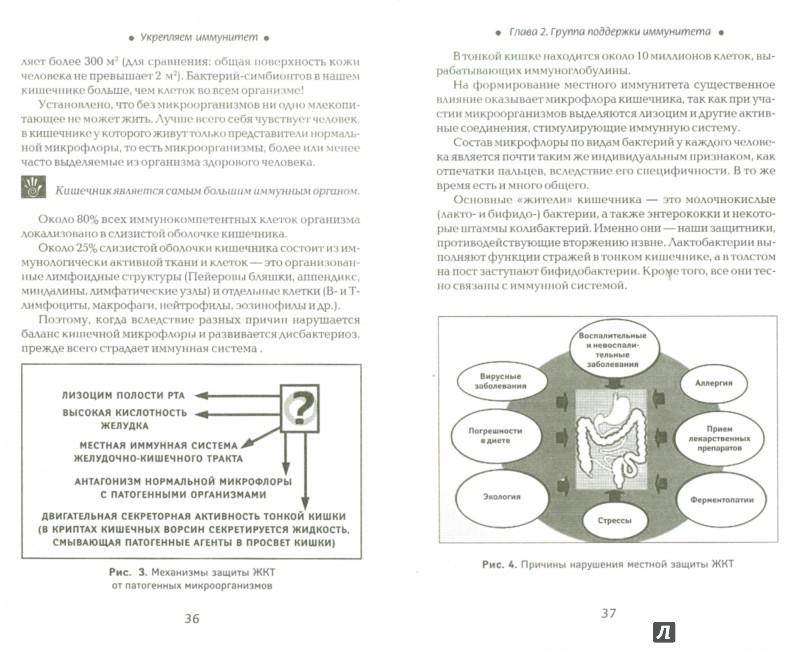 Иллюстрация 1 из 13 для Укрепляем иммунитет - Наталья Соколова | Лабиринт - книги. Источник: Лабиринт