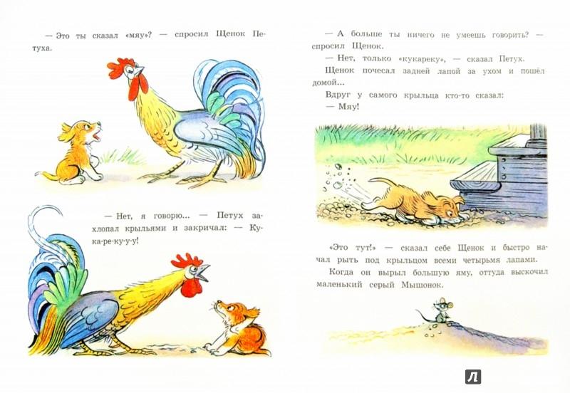 Иллюстрация 1 из 61 для Любимые сказки и картинки - Владимир Сутеев | Лабиринт - книги. Источник: Лабиринт
