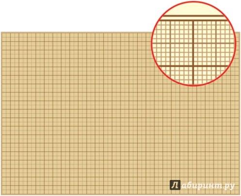 Иллюстрация 1 из 3 для Бумага масштабно-координатная. А2 (714003) | Лабиринт - канцтовы. Источник: Лабиринт