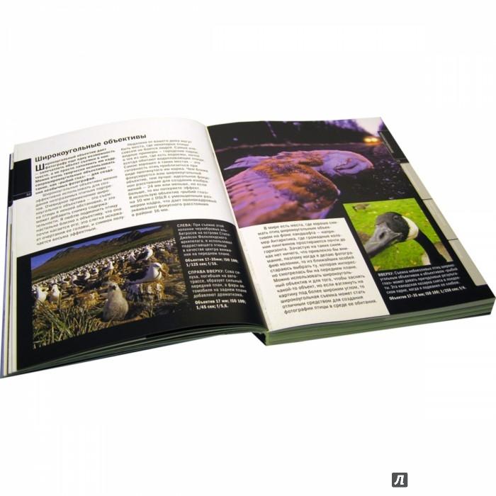 Иллюстрация 1 из 70 для Цифровая фотография. Практическое руководство. Продвинутый курс. Комплект из 5-ти книг - Фриман, Дакворт, Типлинг | Лабиринт - книги. Источник: Лабиринт