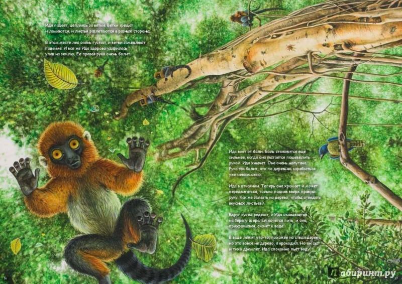 Иллюстрация 1 из 38 для Ида. Взгляд из прошлого - Хеллеве, Хюльсен | Лабиринт - книги. Источник: Лабиринт