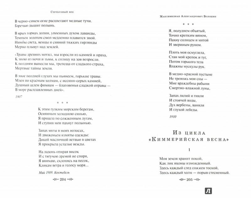 Иллюстрация 1 из 24 для Серебряный век. Стихотворения   Лабиринт - книги. Источник: Лабиринт