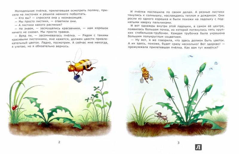 Иллюстрация 1 из 19 для Познавательные сказки. Солнечные цветы - Лариса Тарасенко | Лабиринт - книги. Источник: Лабиринт