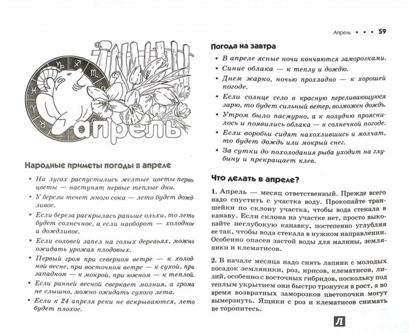 Иллюстрация 1 из 14 для Дачный лунный календарь на 2016 год - Галина Кизима | Лабиринт - книги. Источник: Лабиринт