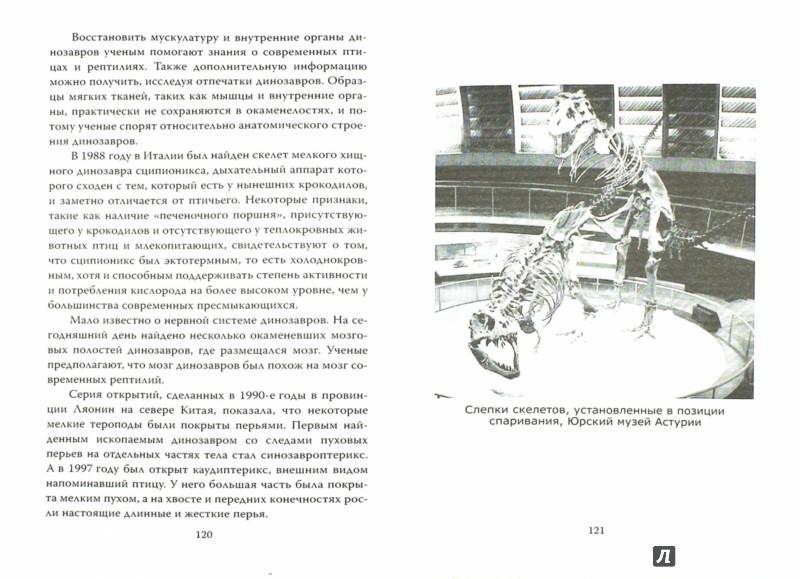 Иллюстрация 1 из 27 для Мир юрского периода. Наука против времени - Борис Соколов | Лабиринт - книги. Источник: Лабиринт