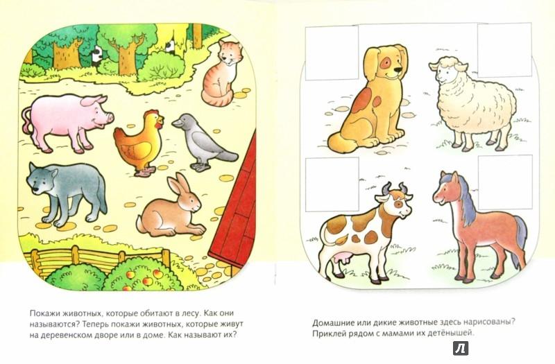 Иллюстрация 1 из 18 для Знакомство с природой. Нескучные уроки - Марина Султанова | Лабиринт - книги. Источник: Лабиринт