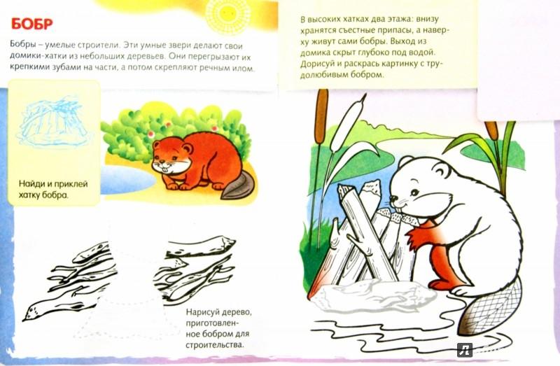 Иллюстрация 1 из 31 для Домики животных | Лабиринт - книги. Источник: Лабиринт