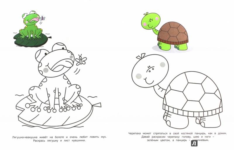 Иллюстрация 1 из 17 для Животные. Раскраски   Лабиринт - книги. Источник: Лабиринт