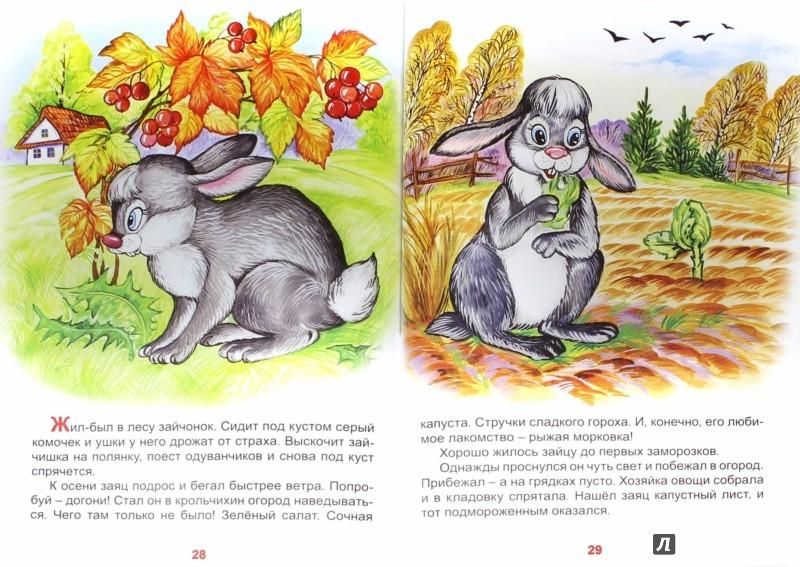 Иллюстрация 1 из 10 для Лесные сказки - Н. Притулина | Лабиринт - книги. Источник: Лабиринт