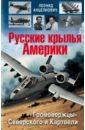 Русские крылья Америки, Анцелиович Леонид Липманович