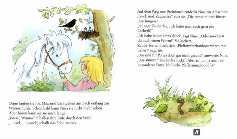 Иллюстрация 1 из 2 для Pony Zauberfee. Wusel ist verschwunden - Sabine Streufert | Лабиринт - книги. Источник: Лабиринт