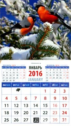Иллюстрация 1 из 3 для Календарь на магните на 2016. Снегири (20616) | Лабиринт - сувениры. Источник: Лабиринт