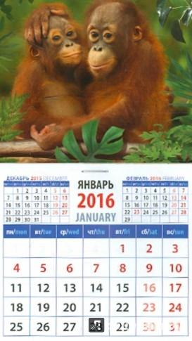 Иллюстрация 1 из 2 для Календарь на магните 2016. Год обезьяны. Маленькие орангутанги (20629) | Лабиринт - сувениры. Источник: Лабиринт