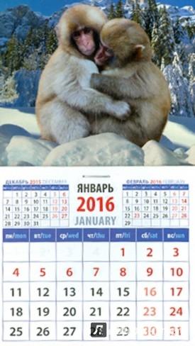 Иллюстрация 1 из 2 для Календарь на магните 2016. Год обезьяны. Снежные макаки (20631) | Лабиринт - сувениры. Источник: Лабиринт