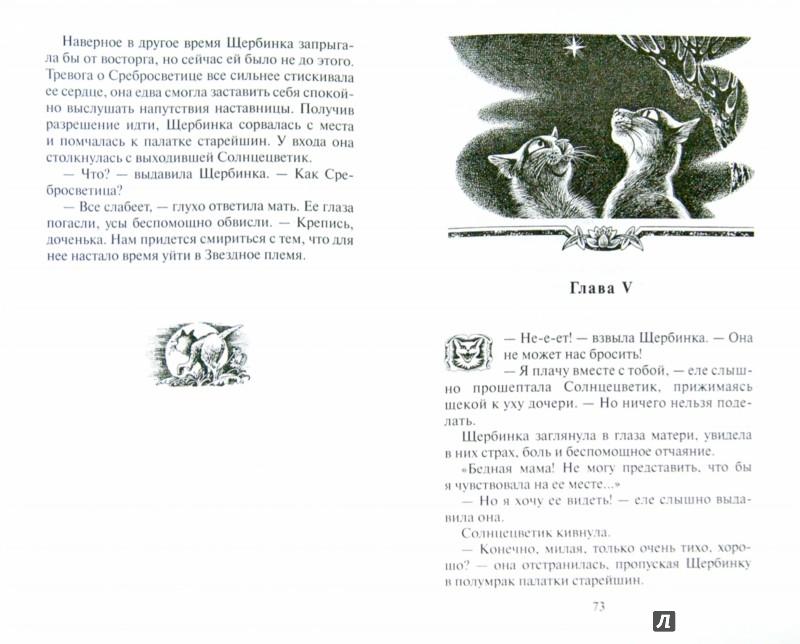 Иллюстрация 1 из 39 для Тайна Щербатой. Предназначение - Эрин Хантер | Лабиринт - книги. Источник: Лабиринт