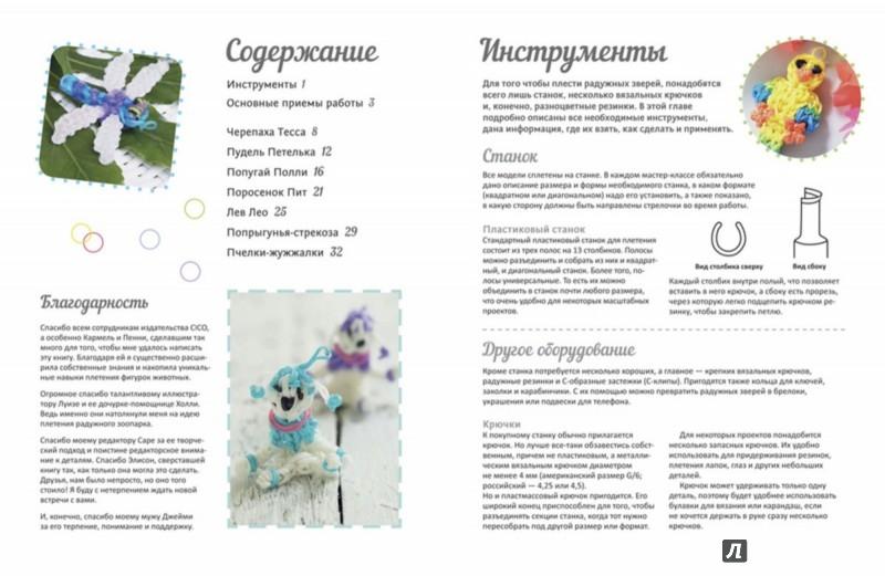 Иллюстрация 1 из 14 для Плетение из радужных резинок. Брелоки, фенечки, заколки - Люси Хоппинг | Лабиринт - книги. Источник: Лабиринт