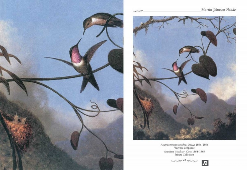 Иллюстрация 1 из 5 для Мартин Джонсон Хид - Юрий Астахов | Лабиринт - книги. Источник: Лабиринт