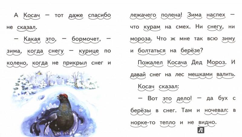 Иллюстрация 1 из 11 для Заяц, Косач, Медведь и Дед Мороз - Виталий Бианки | Лабиринт - книги. Источник: Лабиринт