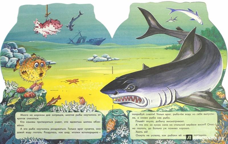 Иллюстрация 1 из 27 для Морские загадки - Святослав Сахарнов | Лабиринт - книги. Источник: Лабиринт