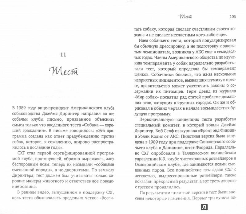 Иллюстрация 1 из 6 для Хола. Любовь с первого гава. Повесть о настоящей собаке - Мартин Кин | Лабиринт - книги. Источник: Лабиринт