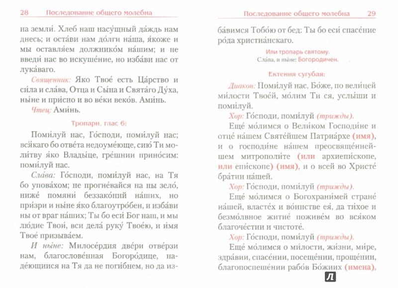 Иллюстрация 1 из 33 для Молебен. Панихида | Лабиринт - книги. Источник: Лабиринт