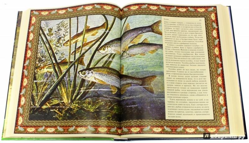 Иллюстрация 1 из 8 для Русская рыбалка | Лабиринт - книги. Источник: Лабиринт