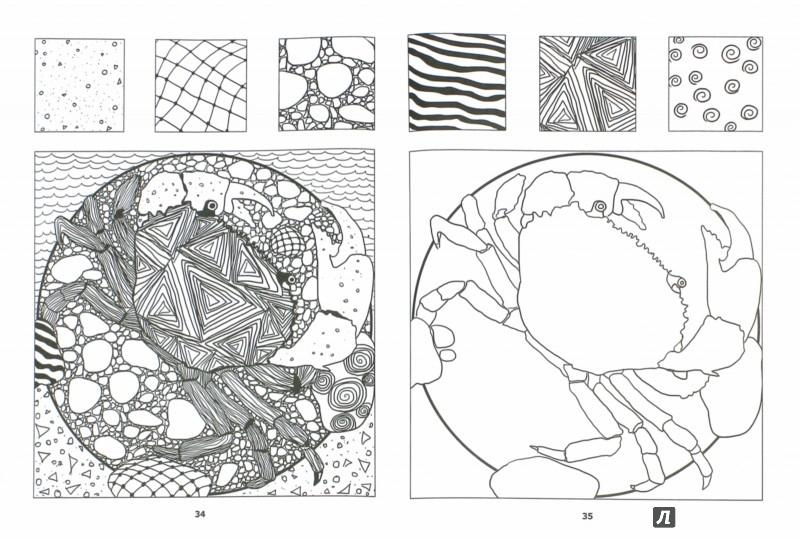 Иллюстрация 1 из 23 для Загадочный океан. Один день - один зендудл - Екатерина Иолтуховская | Лабиринт - книги. Источник: Лабиринт