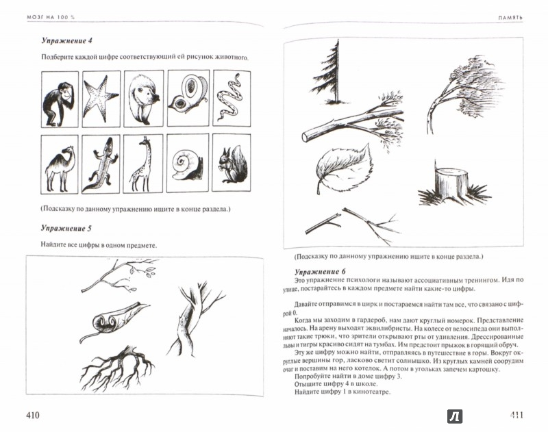 Иллюстрация 1 из 22 для Мозг на 100 %. Интеллект. Память. Креатив. Интуиция. Интенсив-тренинг по развитию суперспособностей - Асоскова, Кинякина, Захарова, Лем, Овчинникова | Лабиринт - книги. Источник: Лабиринт