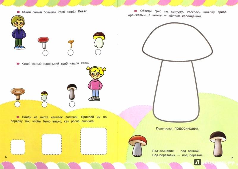 Иллюстрация 1 из 4 для Цветы, грибы, ягоды с загадками и наклейками. ФГОС ДО - Циновская, Циновская | Лабиринт - книги. Источник: Лабиринт