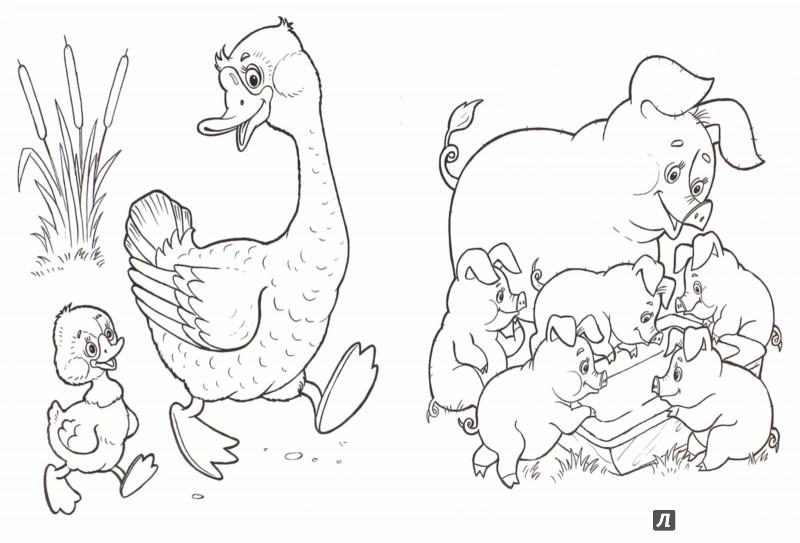 Иллюстрация 1 из 28 для Домашние любимцы - Т. Коваль | Лабиринт - книги. Источник: Лабиринт