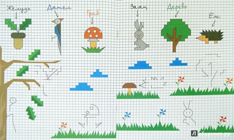 Иллюстрация 1 из 10 для Лес. Книжка в клеточку | Лабиринт - книги. Источник: Лабиринт