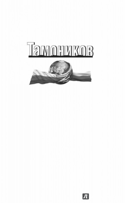 Иллюстрация 1 из 21 для Истребитель майданов - Александр Тамоников | Лабиринт - книги. Источник: Лабиринт