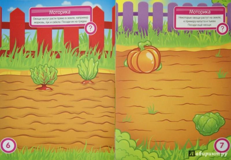 Иллюстрация 1 из 23 для Овощи и фрукты. Развивающая книга с наклейками для детей от 2 лет - С. Разин | Лабиринт - книги. Источник: Лабиринт