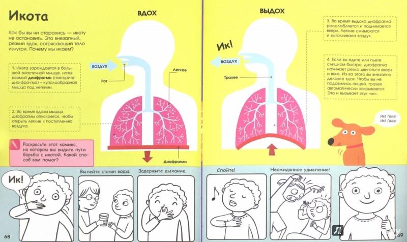 Иллюстрация 1 из 46 для Человеческое тело. Невероятное путешествие вокруг и внутри - Анна Клейборн | Лабиринт - книги. Источник: Лабиринт