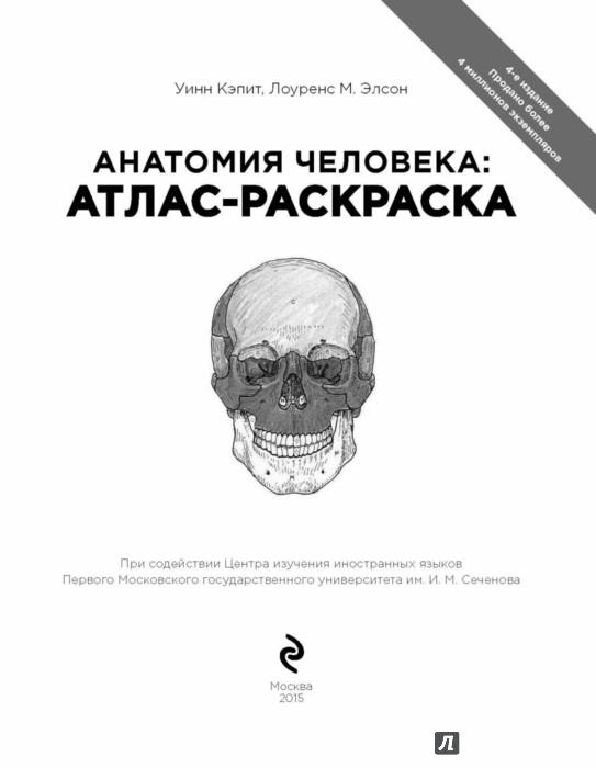 Иллюстрация 1 из 44 для Анатомия человека. Атлас-раскраска - Элсон, Кэпит | Лабиринт - книги. Источник: Лабиринт
