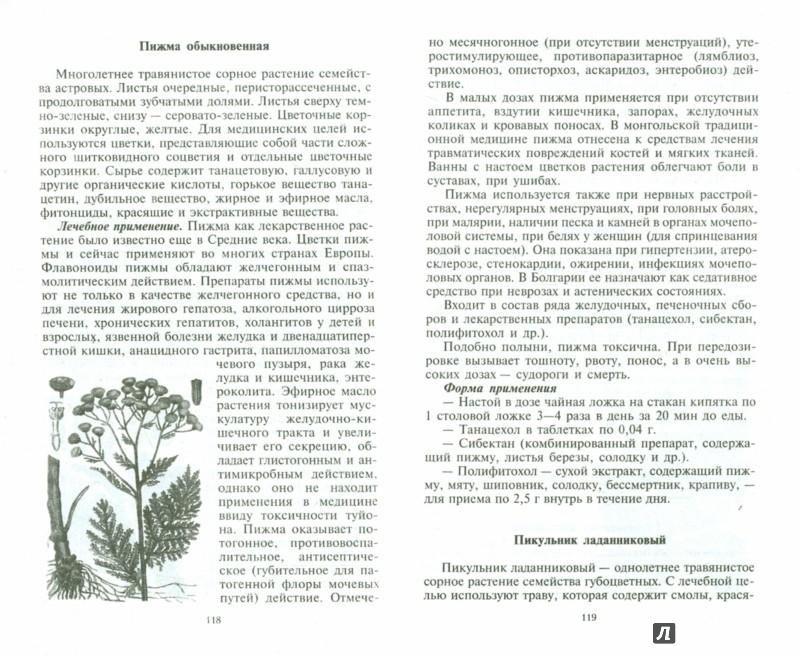 Иллюстрация 1 из 5 для Уникальные лечебные свойства сорняков - Корсун, Викторов | Лабиринт - книги. Источник: Лабиринт