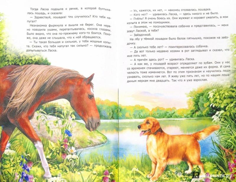 Иллюстрация 1 из 6 для Ласка и Звездочка - Лариса Тарасенко | Лабиринт - книги. Источник: Лабиринт