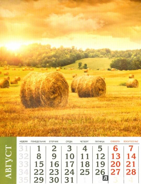 Иллюстрация 1 из 5 для Календарь на 2016 год. ПРИРОДА (на магните) (39588-36) | Лабиринт - сувениры. Источник: Лабиринт