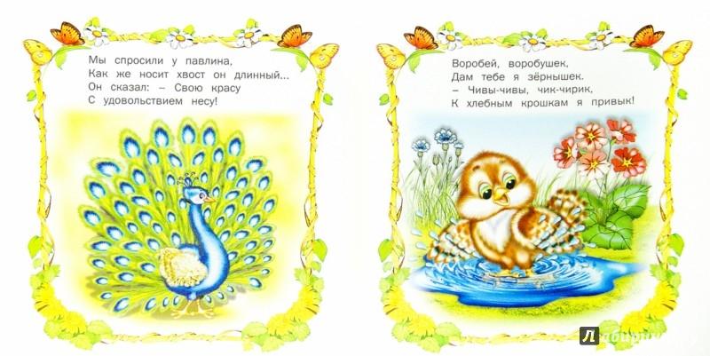 Иллюстрация 1 из 22 для Птичьи секреты | Лабиринт - книги. Источник: Лабиринт