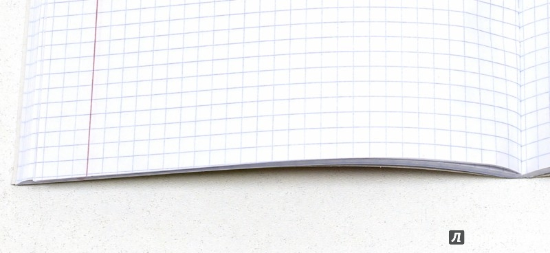 """Иллюстрация 1 из 3 для Тетрадь 80 листов """"Розовый букет"""" (С0414-08)   Лабиринт - канцтовы. Источник: Лабиринт"""