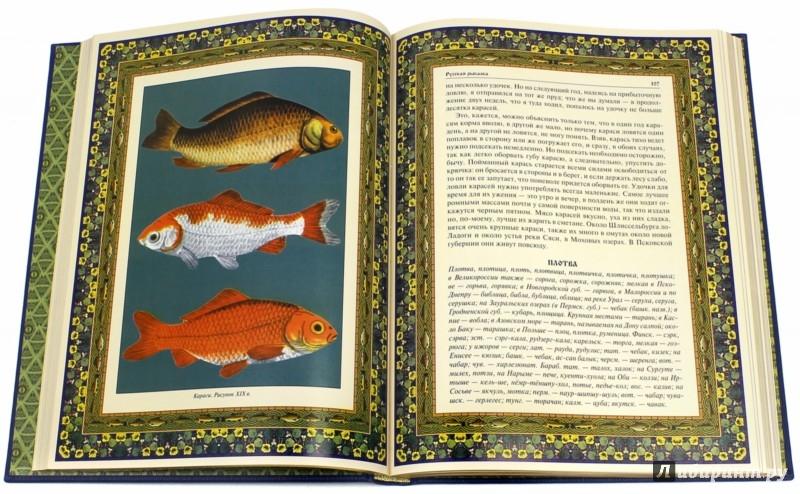 Иллюстрация 1 из 15 для Русская рыбалка | Лабиринт - книги. Источник: Лабиринт