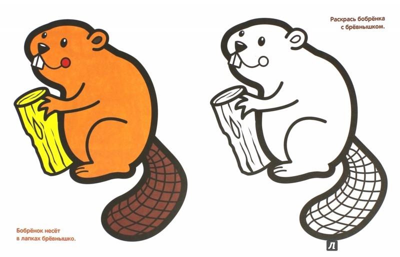 Иллюстрация 1 из 19 для Рисуйте, малыши. Змея. Выпуск 5 | Лабиринт - книги. Источник: Лабиринт